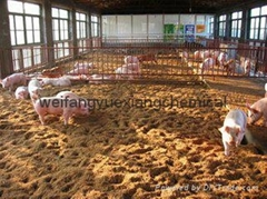 Poultry chicken duck sheep cow pig fermentation bed bacteria microorganism