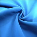 NFDS1418-19 Nylon Spandex Plain Dyed