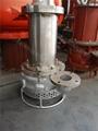 耐腐蚀排污泵 不锈钢潜污泵 2