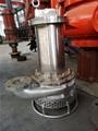 耐腐蚀排污泵 不锈钢潜污泵 4
