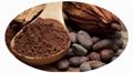 Alkalized Cocoa Powder