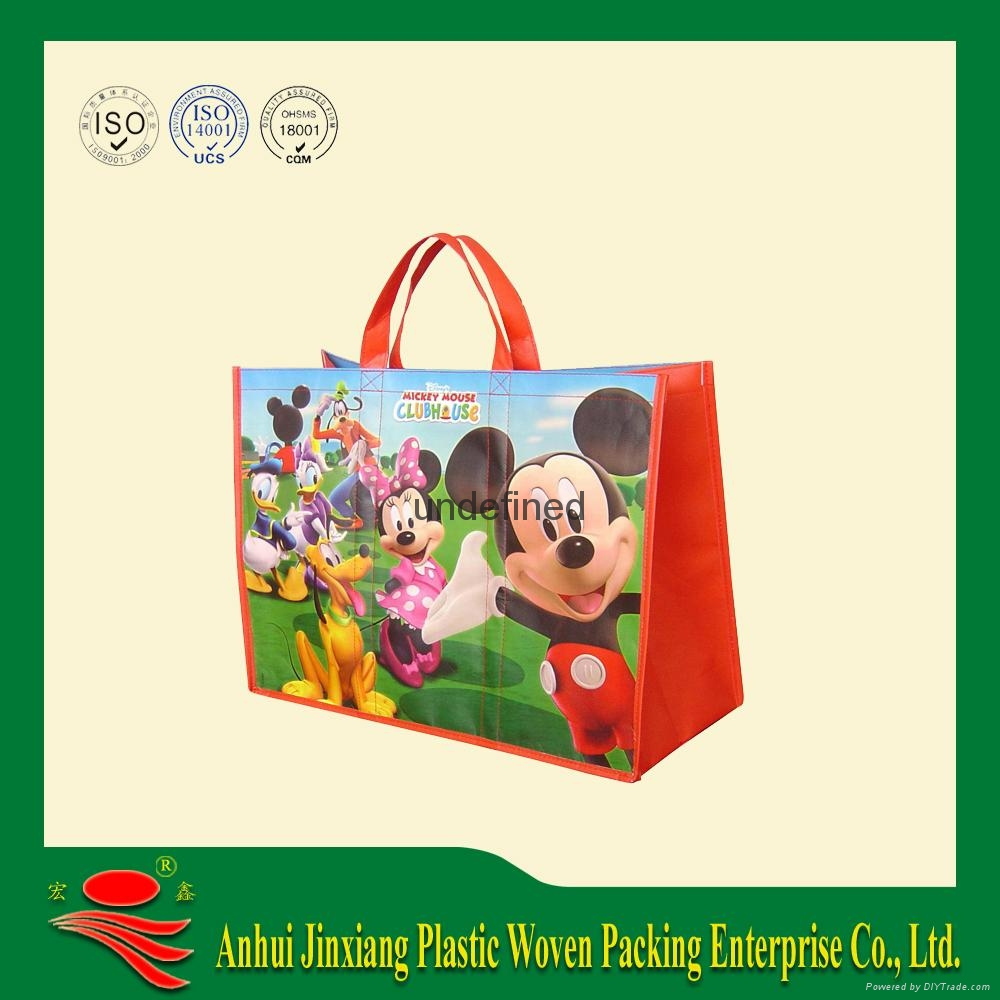 PP woven Shopping bag,cooler bag 1