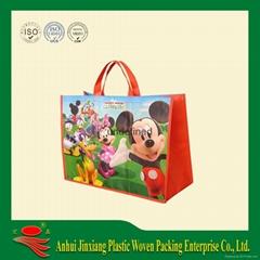 PP woven Shopping bag,cooler bag