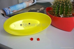 cheap plastic flower pot,five different color for you to choose