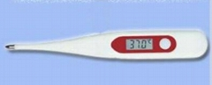 Pen electronic thermometer digital thermometer