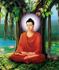 佛像-釋迦牟尼在菩提樹下悟道成佛度眾生
