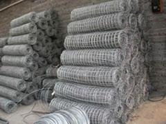 经纬网 方眼网 镀锌铁丝网 煤矿支护网