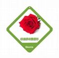 玫瑰花香味整理劑
