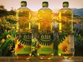 Refined Sunflower Oil 1