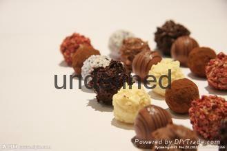 深圳进口巧克力进口报关代理 2