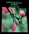 北京廠家中科瑞達電子顯示屏 3