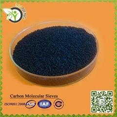 Carbon Molecular Sieve -260