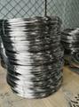 Titanium Rod 5