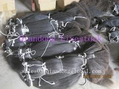 Black Horsetail Hair