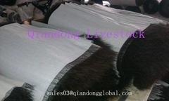 Horse Tail Hair Textiles