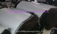 Horsetail Hair Textiles for Lining Cloth