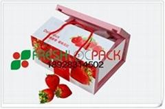 草莓包装箱吸水纸