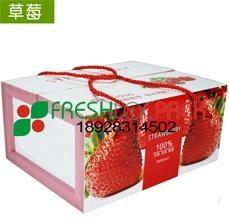 草莓包裝箱吸水紙 5