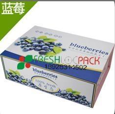 蓝莓泡沫箱