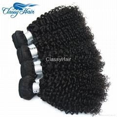 Kinky Curly Virgin Brazilian Peruvian Malaysian Human Hair Weave Bundles