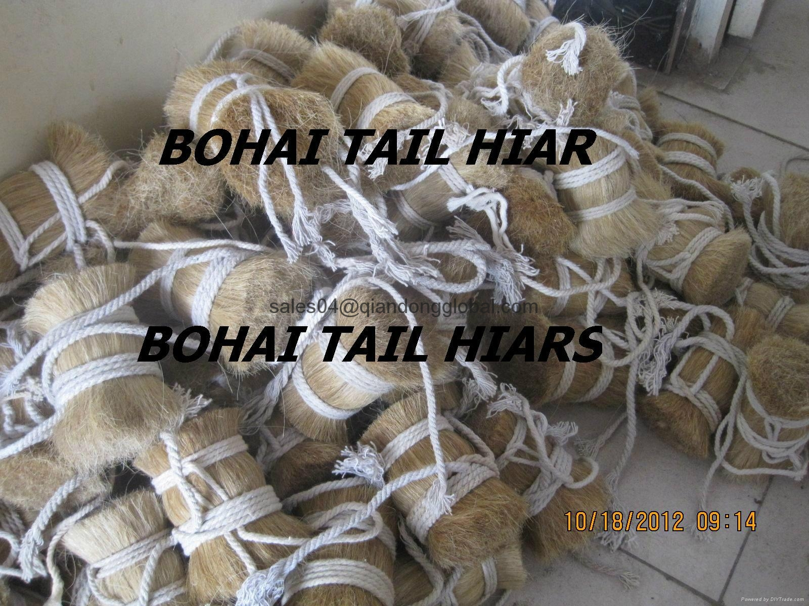 high quality of cattle hair 5