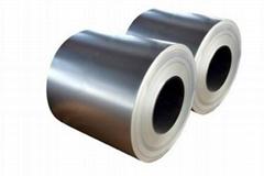 (0.13-1.3mm) Hot Dipped Galvanized Steel Coil/Galvanizado/SGCC/Sgch