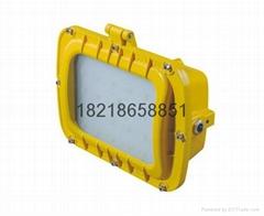 正輝BYC6239-LED200W防爆節能燈