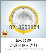 BFC6189-W50防爆环形荧光灯正辉照明型号