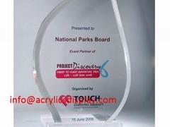Factory cheep acrylic award,trophy