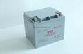 信源免维护阀控式铅酸蓄电池VT