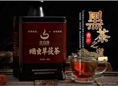 京眾康茯茶蛹虫草鐵盒裝