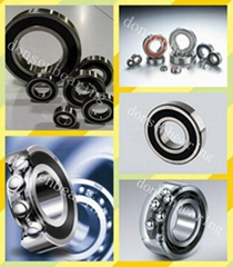 China Bearing manufacturer 6011ZZ/2RS Deep Groove Ball Bearings