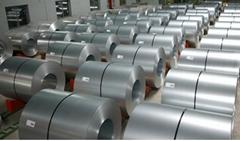 ASTMA53 Galvanized Steel Coil