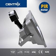 2016 Centrix Good quality MET DLC ErP List  50W LED Floodlight Mewanwell Driver