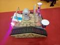 Mini  crawler intelligent robot  WL-160