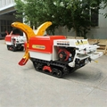 Self propelled crawler air blast power sprayer
