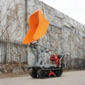 Crawlertypedumperwithliftcontainer