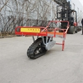 Mini Walk Behind Crawler Truck Dumper