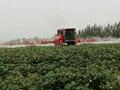 High clearance self propelled type boom sprayer