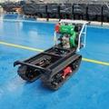 mini hydraulic crawler dumper with diesel engine