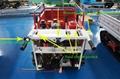 迷你履带遥控果园搬运车  WL-350 12