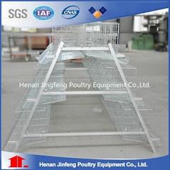 Professional Galvanized Wire Cages For Chicken Bird