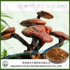 China Herbal extract 10%