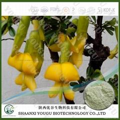 Herbal medicine extract