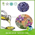 100% Pure Essential Oil Borage Oil From