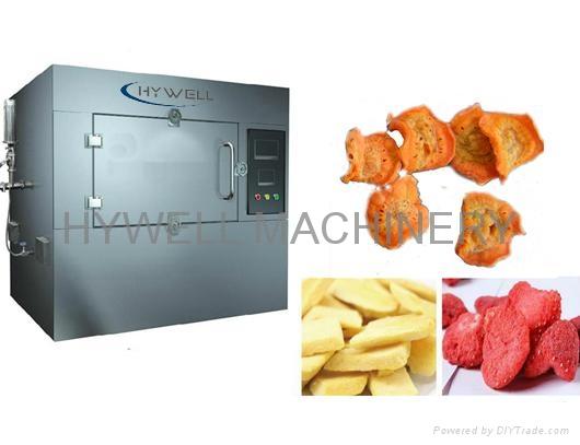 WZ Microwave Vacuum Dryer 1