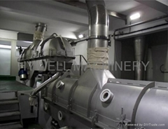 ZLG Salt Dryer