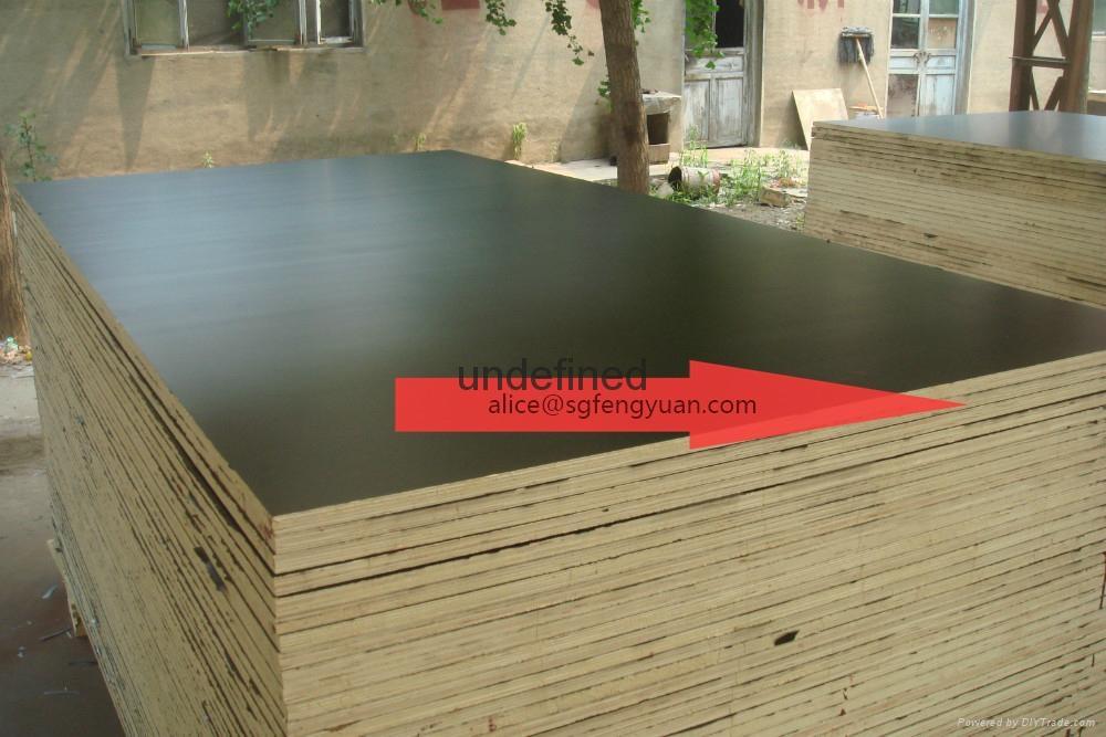 waterproof shuttering plywood 4