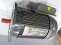 GV型立式减速电机 5