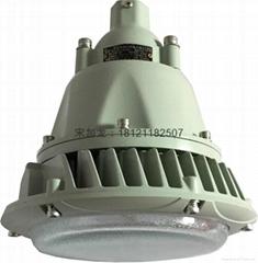 BAX1207D固态免维护LED防爆灯具